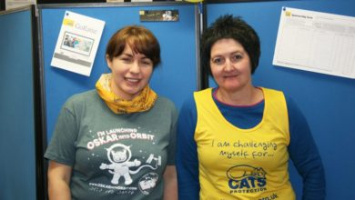Stepping Up to the Challenge for Cats Protection